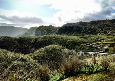 Path leading from the Pancake Rocks in Punakaiki, NZ