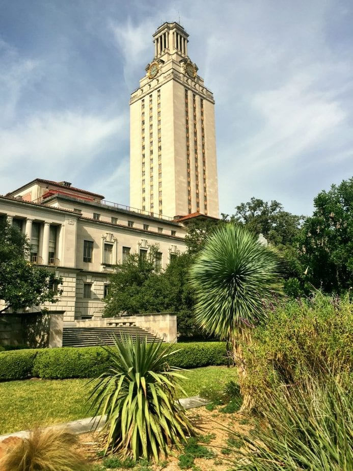 The University of Texas Tower standing tall surrounded by plants and greenery