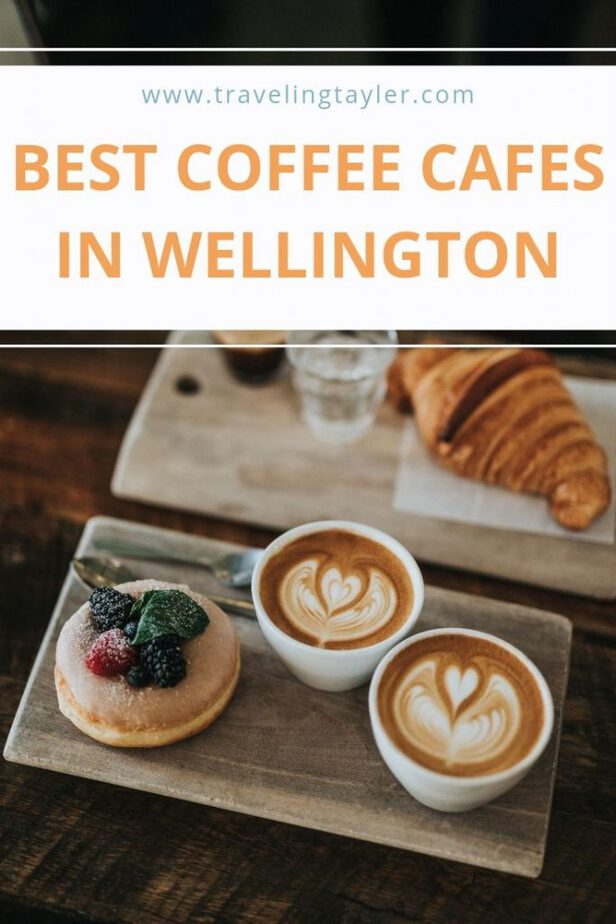 Best Coffee Cafes in Wellington, New Zealand