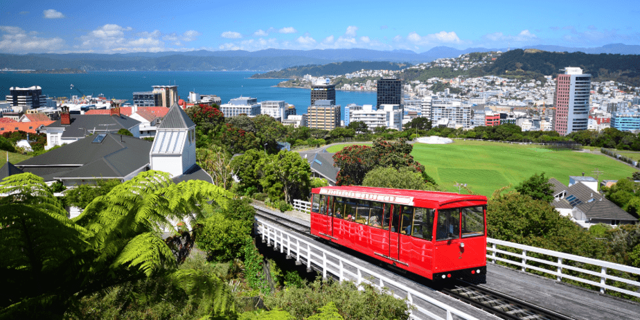 5 Reasons To Visit Wellington, New Zealand